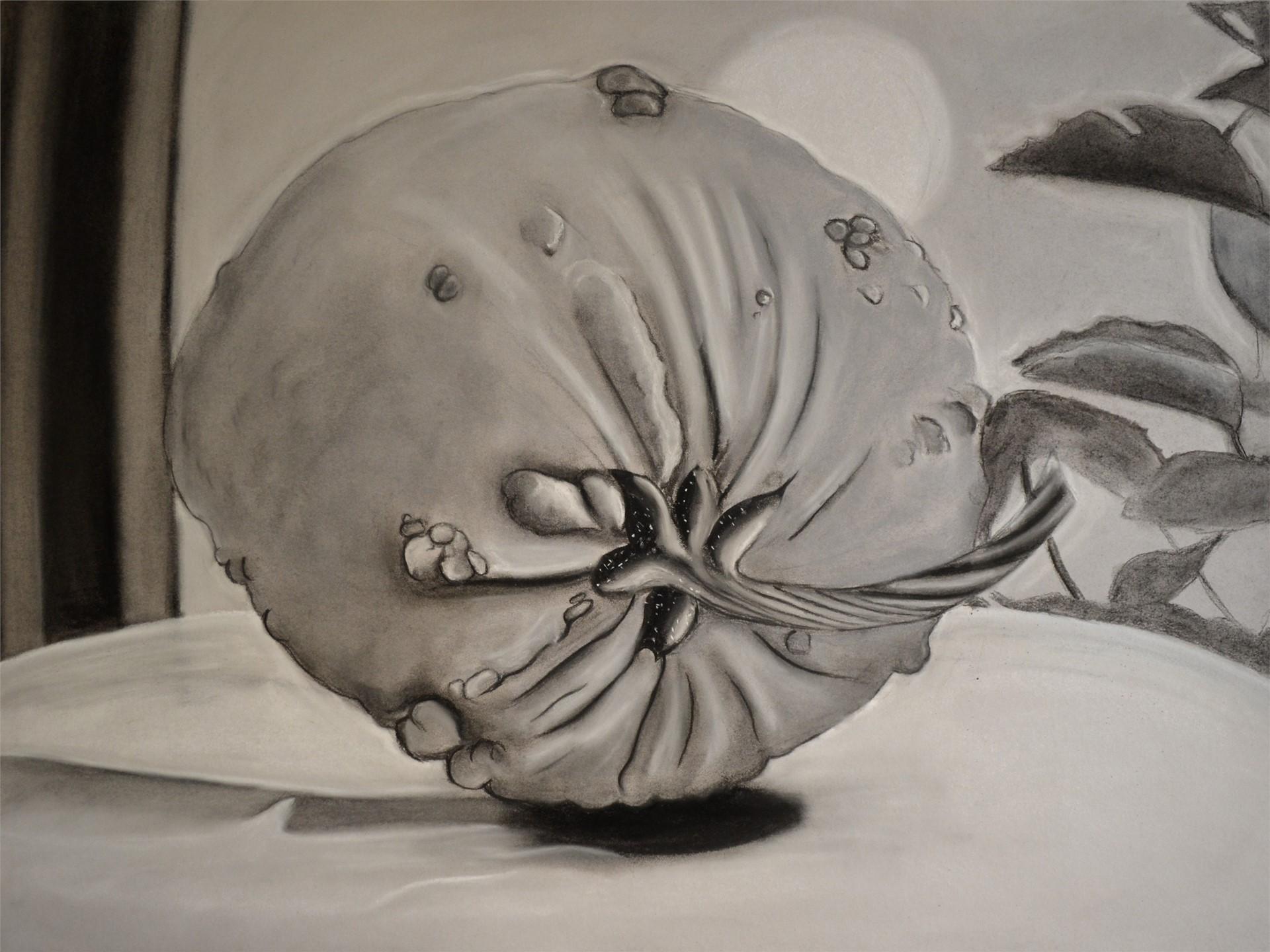 COURTNEY SMITH, Pumpkin, charcoal on gray bogus, 18 x 24, 2015