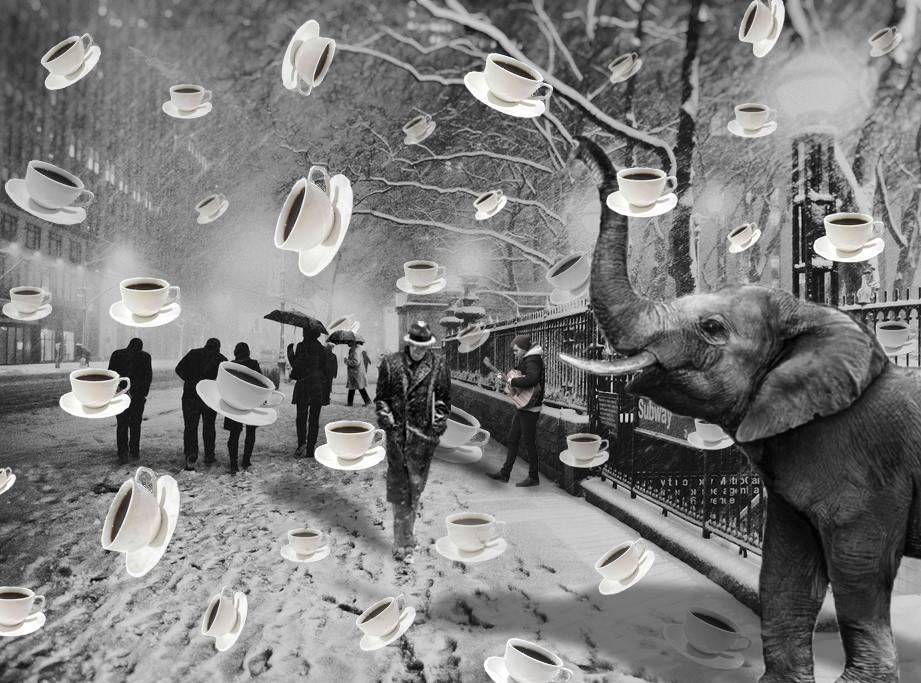 TAYLOR BOCK, Photomontage, Digital Photography