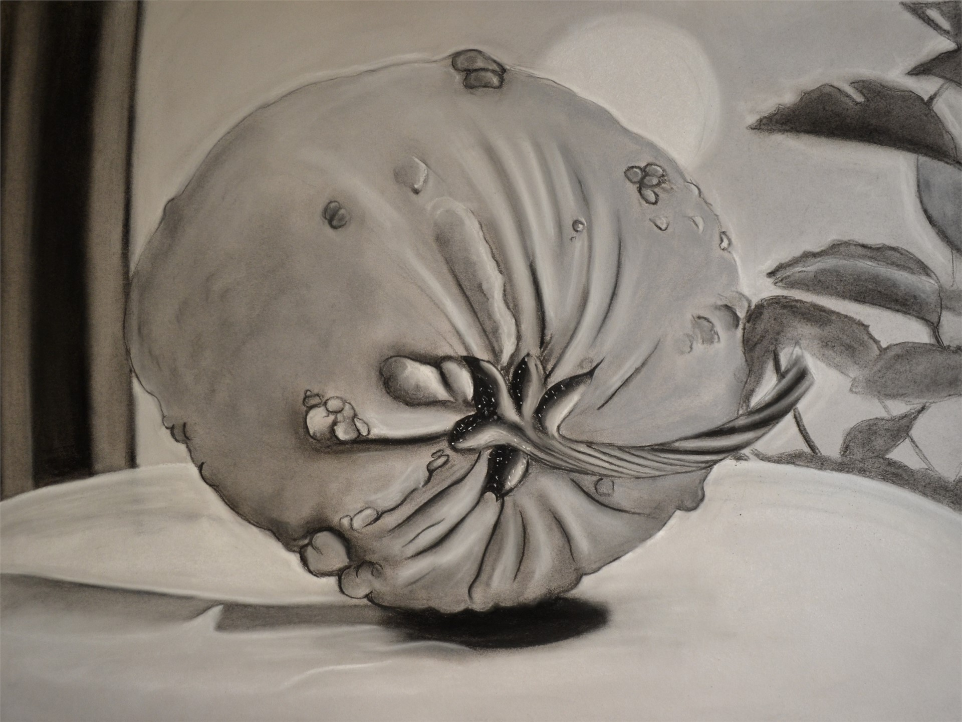 Courtney Smith, Pumpkin, charcoal on gray bogus, 18 x 24, 2015