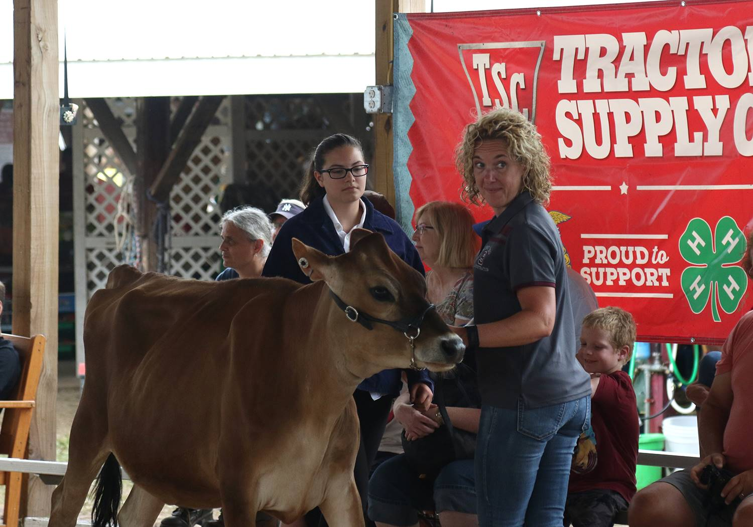 Sidney at Delaware County Fair VIP show 2019
