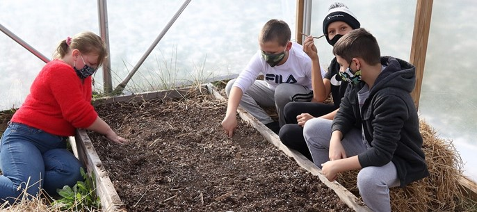 Students working in elementary greenhouse